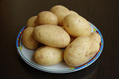 New potatoes. New fresh spring potatoes on plate royalty free stock images