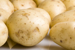 New potatoes. Against a white  background Stock Photos