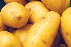 New potatoes. Fresh new potatoes on display Stock Photography