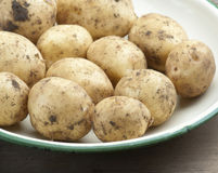 New Potatoes. Freshly Dug Homegrown New Potatoes In An Enamel Dish royalty free stock photo