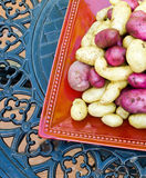 New Potatoes. Fresh picked from the home vegetable garden, red potatoes and fingerling potatoes stock images