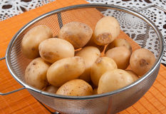 New potatoes. Potatoes in the grid on the table Stock Image