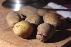 New potatoes. Jersey Royal new potatoes on a wooden chopping board Stock Photos