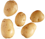New potatoes Stock Photo