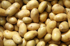 New potatoes. Close up of new potatoes Stock Photo