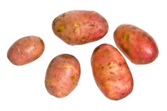 New potatoes Royalty Free Stock Photo