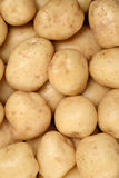 New potatoes background Stock Photos