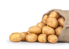 New potatoes in the bag. Isolated on white background. close-up Stock Photography