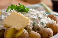 New potatoes with cottage cheese Royalty Free Stock Photo