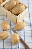 New potatoes Royalty Free Stock Image