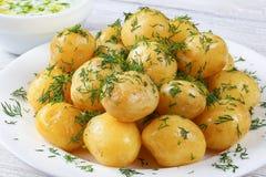 New potatoes and greek yogurt sauce Royalty Free Stock Photos