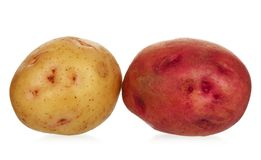 New potatoes Royalty Free Stock Photo