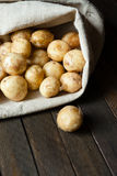 New potatoes in a linen sack Royalty Free Stock Photography
