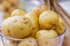 New potatoes ready for cooking, fresh vegeterian food Stock Images