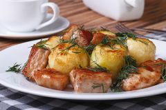 New potatoes with roast pork slices and dill Stock Images