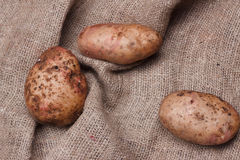 New potatoes on sackcloth on wooden table, top view. Closeup Stock Photos