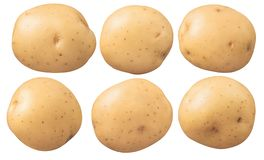 New potatoes set isolated on white background royalty free stock photos