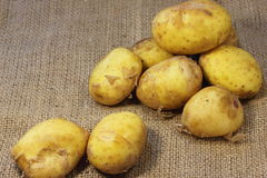 New potatoes Royalty Free Stock Image