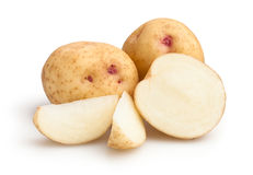 New potatoes Stock Images