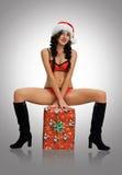 New purchases Santa's helper 2016 happy new year Royalty Free Stock Photos