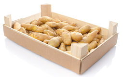 New rattes potatoes in a wooden crate Stock Image