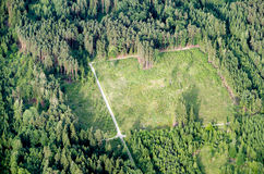 New reforested wooded area. Aerial view of a new reforested wooded area shaped like a rectangle stock photography