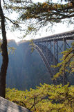 New River Bridge. View of the New River Gorge bridge in West Virgina, framed by a tree Royalty Free Stock Image
