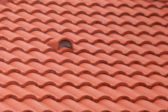 New roof tiles, detail. New roof tiles close up detail Royalty Free Stock Image