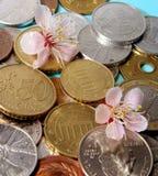 New season of money Royalty Free Stock Photo