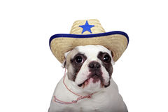 The New Sherriff In Town Stock Image