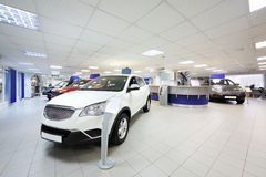 New shining beautiful cars stand near desk reception. In car shop Royalty Free Stock Images
