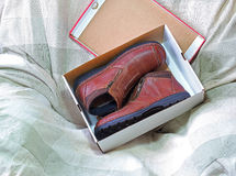 New shoes in a box. A pair of brown brand new shoes in a shoe box Stock Photography