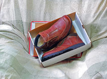 New shoes in a box. A pair of brown brand new shoes in a shoe box Stock Image