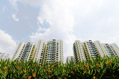 New Singapore Government apartments Stock Images
