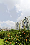 New Singapore Government apartments Stock Photography