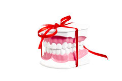 New smile gift. Atificial human jaw with white teeth represented as a gift with a red ribbon stock photography