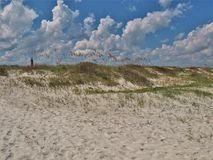 New Smyrna Beach Dunes and Sky. In the distance beyond the dunes stands the Ponce Lighthouse. Also known as the Ponce de Leon Inlet Lighthouse, this National stock photo