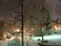 Winter is coming a bit late but is every thing alright ?. New snow is beautiful here in Espoo Finland. And tress are feely a little bit cold, I suppose royalty free stock photos