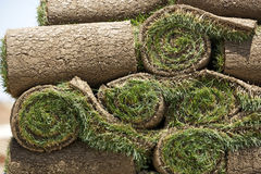New Sod. Rolls of new sod wait to be laid in place royalty free stock image