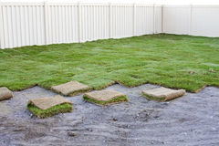 New Sod Grass. A yard with newly-planted sod grass stock photos