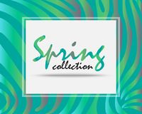 New Spring collection.New Arrivals of spring season. Design in Green tone and holographic foil color Royalty Free Stock Images