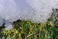 New spring grass covered with white melting snow, natural background. Top view stock photos