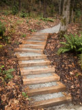 New Steps Intp Park. A set of new steps into Interlaken Park in Seattle designed and built as an Eagle Scout project by the Boy Scouts Royalty Free Stock Image