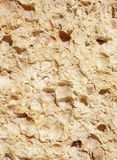 New stone cladding plate closeup Royalty Free Stock Photography