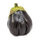 New strain of aubergine on white background Royalty Free Stock Photography