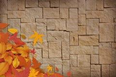 New sweet autumn background. New sweet seasons autumn background Royalty Free Stock Photography