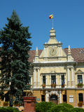 New town hall in Brasov, Romania. Photo of the new town hall with it's architecture and mother wolf with Remus and Romulus in front Royalty Free Stock Photography