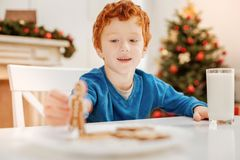 Happy curly haired kid playing with gingerbread man. New toy. Selective focus on a radiant little boy smiling cheerfully while sitting at a table and playing Royalty Free Stock Images