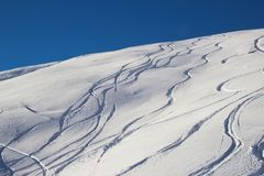 New track on snow powder Royalty Free Stock Photo