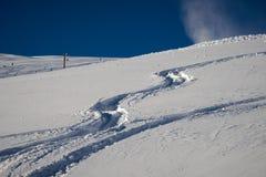 New track on snow powder Stock Photos
